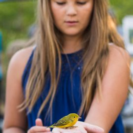 Editing in Lightroom – Sydney holding a bird